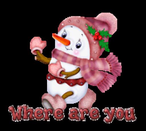 Where are you - CuteSnowman