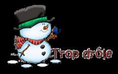 Trop drole - Snowman&Bird
