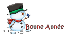 Bonne Annee - Snowman&Bird