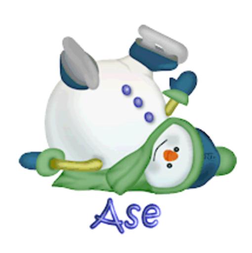 Ase - CuteSnowman1318