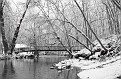 Black and White River View #2
