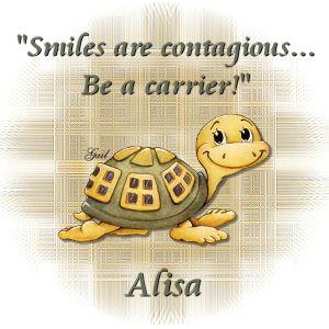 Alisa-gailz0907 AH Turtles02sm RM.jpg