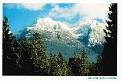 BRITISH COLUMBIA - Mt Arrowsmith