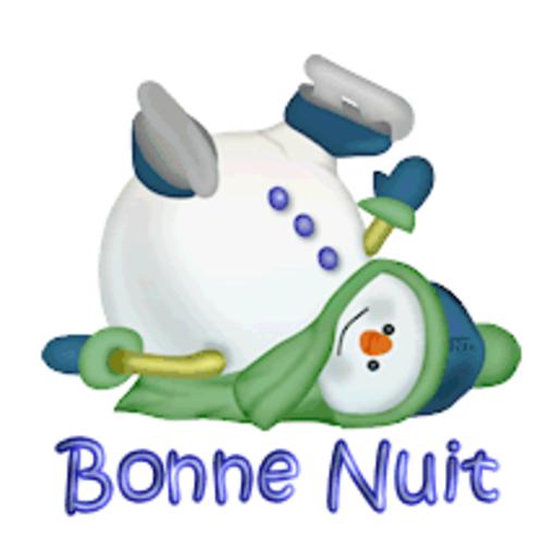 Bonne Nuit - CuteSnowman1318