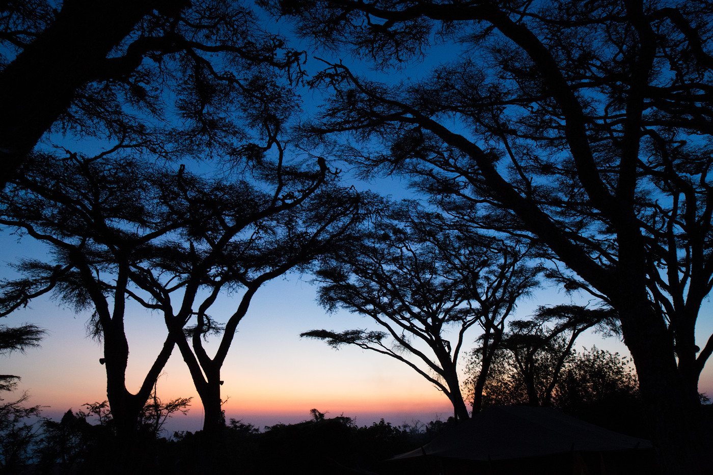 Tanzania 080.jpg