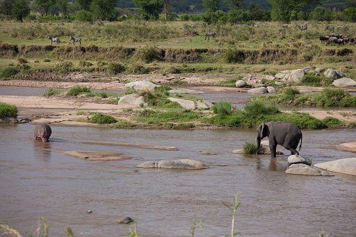 Tanzania 449.jpg