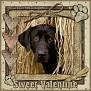 dcd-Sweet Valentine-In The Hay