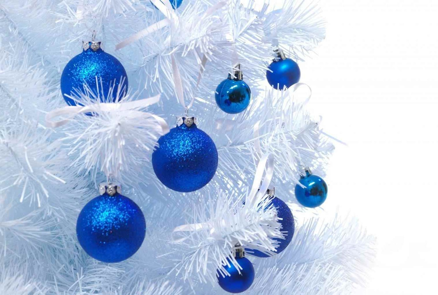 photo blue christmas tree soul thumping background template freevectors background blue christmas tree template freevectors walldevil walldevil blue christmas tree background image seasonal backgrounds album ami59 fotki com photo and video blue christmas tree soul thumping