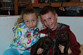 Rylee Robbie and 2 chocolate lab puppies