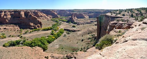 View east (Canyon de Chelly view) from Junction overlook