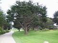 Monterey Trip Aug07 033.jpg