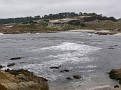 Monterey Trip Aug07 338.jpg