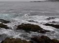 Monterey Trip Aug07 344.jpg