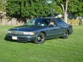 1995 Caprice daily driver