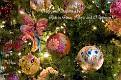 Christmas 2012b