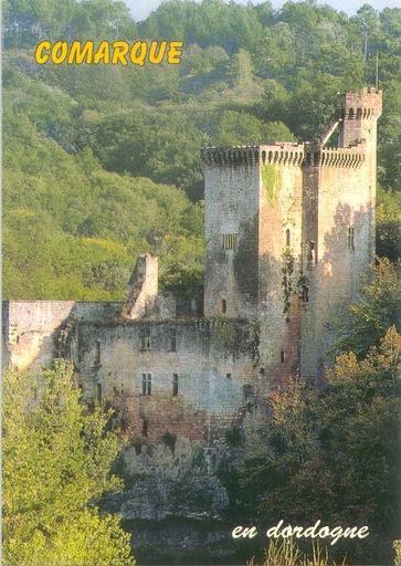 Comarque Castle (24)