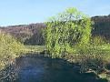 Die Emmer sieht erstes Frühlingsgrün