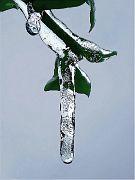 Skulptur des Frostes