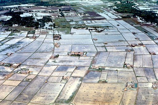 14-Phuoc Long Rice Farm