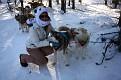 2012-02-19-0012-dog sledding