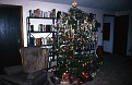 Christmas tree in basement library, Powell, Wyoming