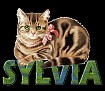 SYLVIA-SITTINPRETTY