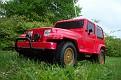 Jeep Wrangler Park Cruise (6)