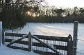 Snow 2010 Almen (5)