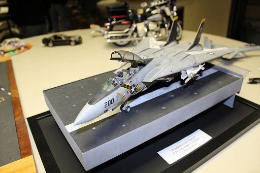 3-F-14 Tomcat-RTurner 4