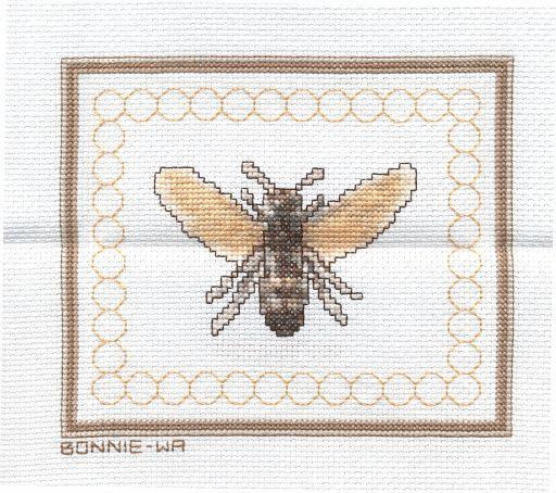 Bonnie - Washington