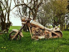 Ökologische Harley