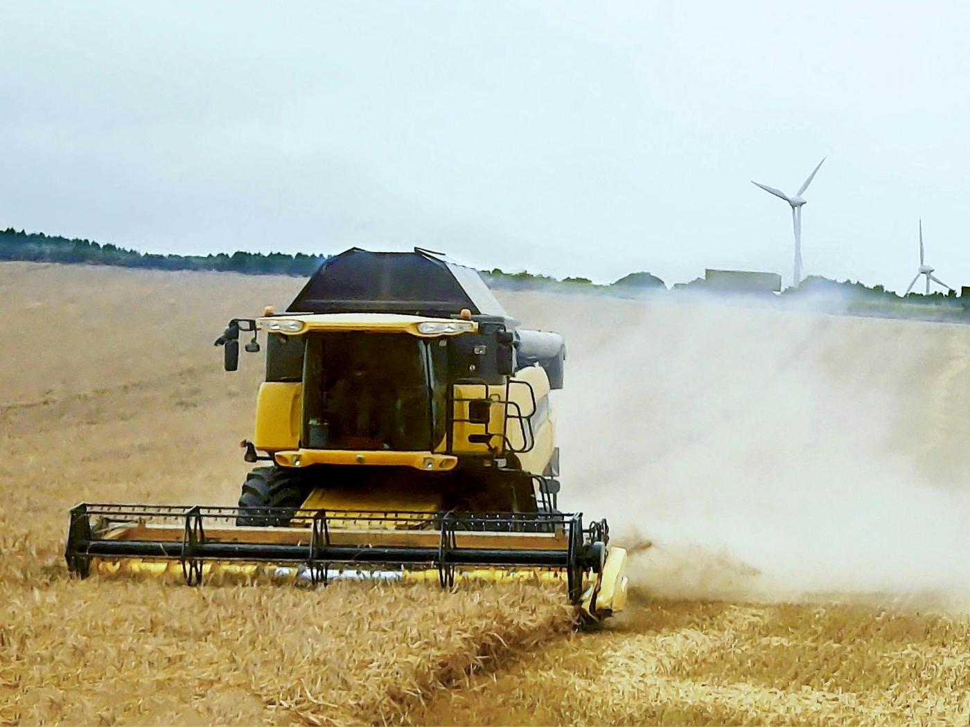 Die Getreideernte hat begonnen