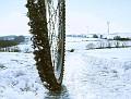Weißer Winter