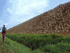 Zuckermauer