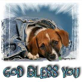 1God Bless You-blujeanpup