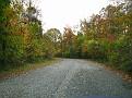 Dmitri's Visit October 2009 day 2 (41)