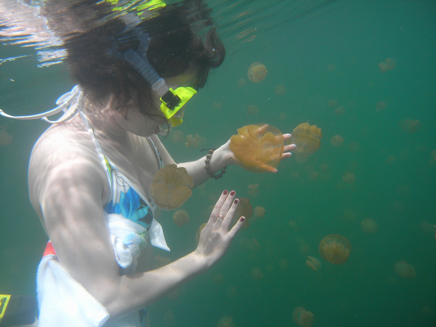 Fionnuala and Jellyfish