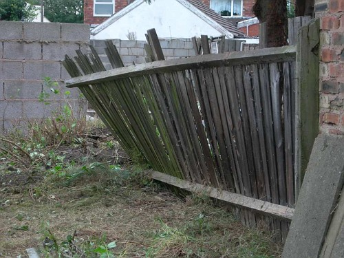 The fence has nearly collapsed as the roots from the tree next door push it over