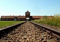 8522 Birkenau Concentration Camp