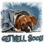 1Get Well Soon-blujeanpup