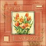 tulip frame get well